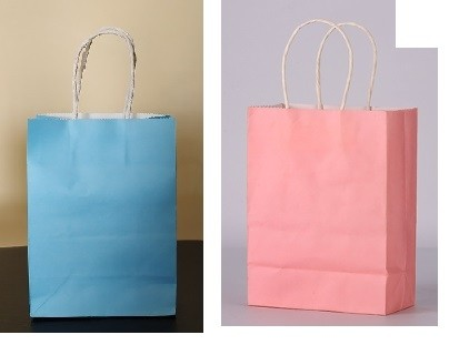 Paper Bag with handle 5pcs per pack