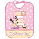 Minnie Mouse 1st Birthday Bib