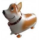 Corgi (China) Pet Balloon