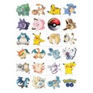 Pokemon Tattoos 24pcs