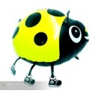 Pet Yellow Ladybird
