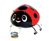 Red Pet Ladybird